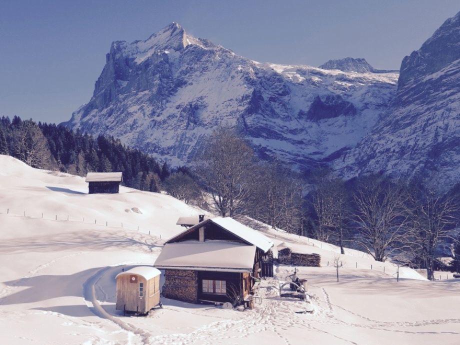 Winter mit Wetterhorn 3692m