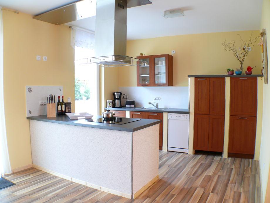 Moderne Küche mit Geschirrspüler und Induktionskochfeld