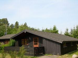 Ferienhaus Blokhus Hune