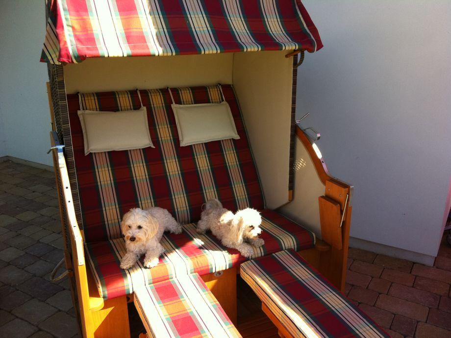 ferienhaus bella vita ostsee usedom zinnowitz familie norbert und susanne schr der. Black Bedroom Furniture Sets. Home Design Ideas