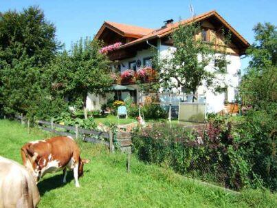 III im Gästehaus Geisenhof