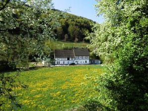 Ferienwohnung Alte Sattlerei bei Willingen Winterberg Medebach