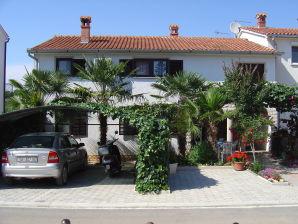 Apartment Knok