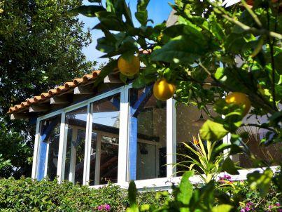 Casa Plantinha