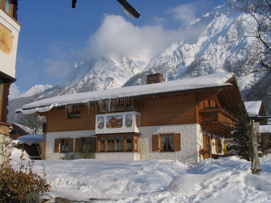 Haus Rotbuche im Winter