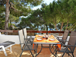 Holiday house direct at the sea in Port Andratx ID 2366