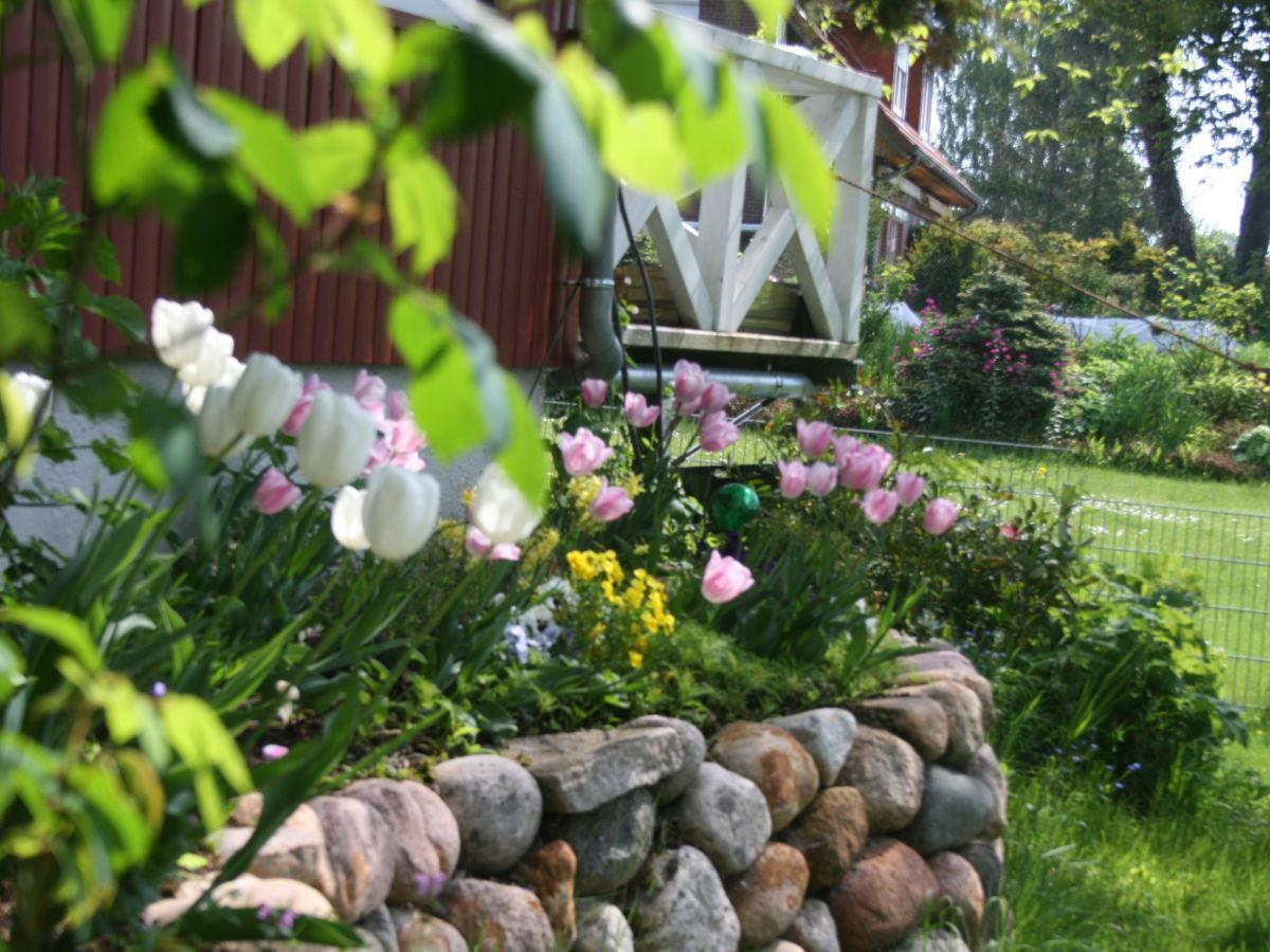 ferienhaus van penze cottage ostsee p nitzer seenplatte. Black Bedroom Furniture Sets. Home Design Ideas