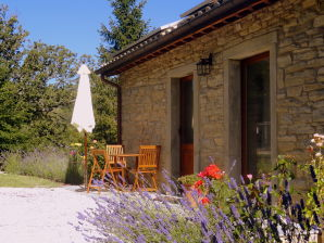 Holiday apartment La Casaccia
