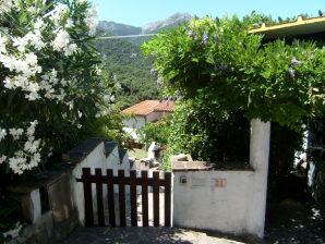 Ferienhaus Casa del Nespolo