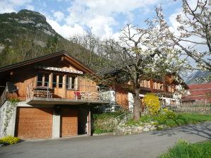 Ferienwohnung in alleinstehendem Häuschen in Innertkirchen