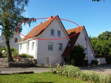 Holiday apartment Am Schwanensee