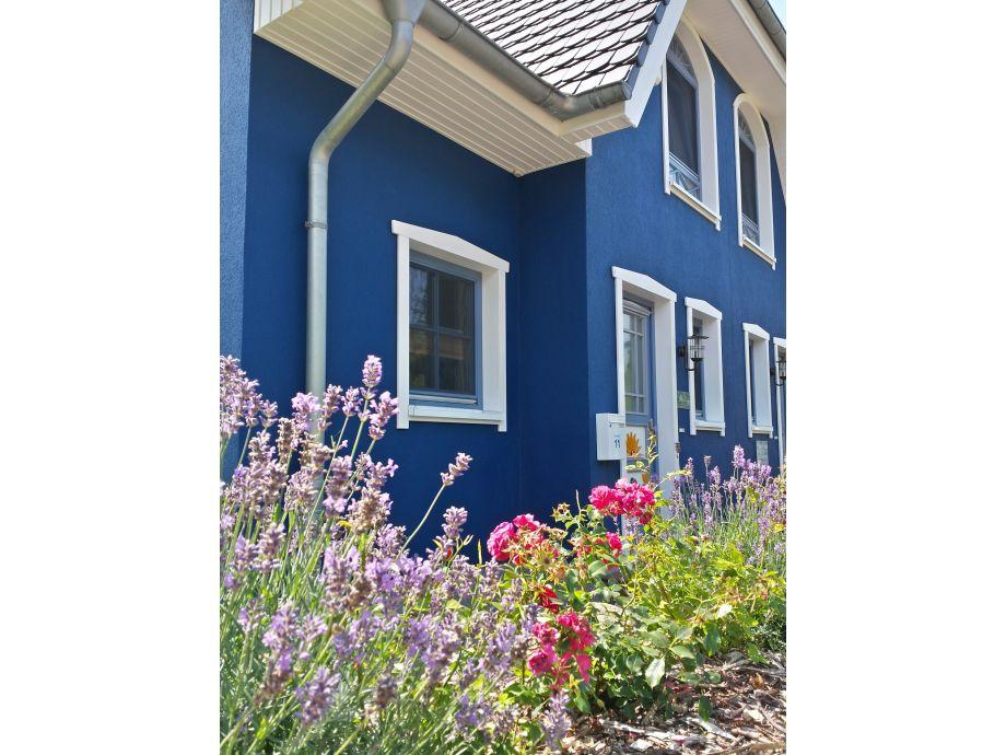 Hauseingangsseite mit bepflanztem Steinwall