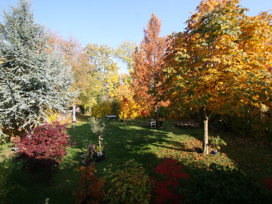 Garden at Oktober 2015