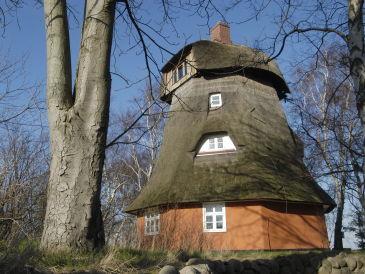 Ferienhaus Fischlandmühle