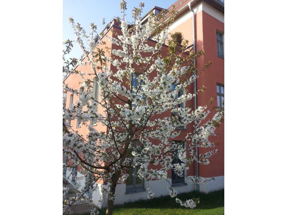 partnersuche werder havel Passau