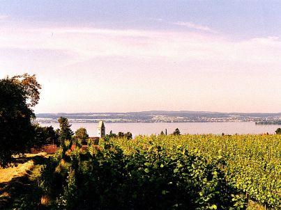 Bodenseeblick