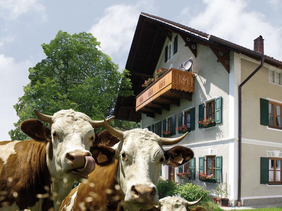 Bartllbauer-Hof