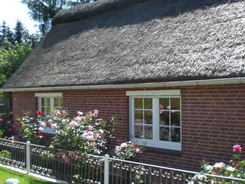 Ferienhaus Reetdach-Perle