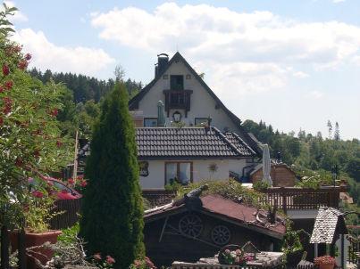 """""""Tannenzapfen"""" im Ferienhaus Sonnhalde"""