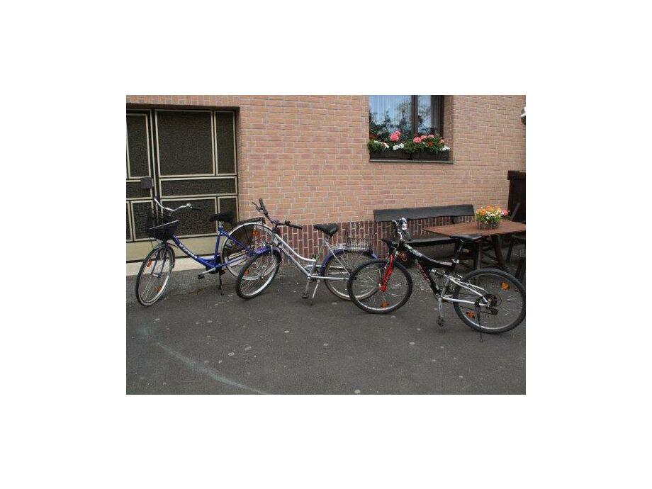 3 Fahrräder zur kostenlosen Nutzung