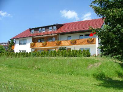 Ochsenkopf im Haus Rosenbühl