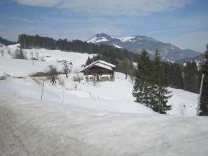 Ferienhaus Berghütte Moser-Hütte