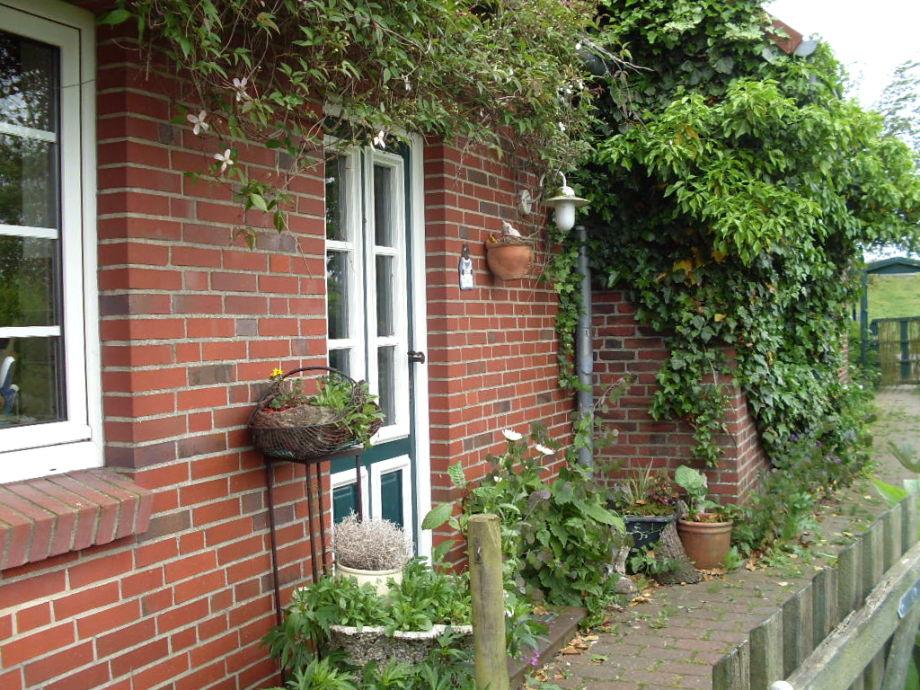 Die bewachsene Hausfassade