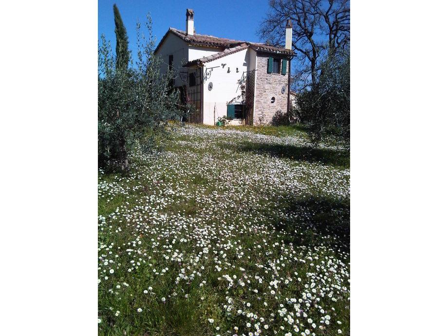 Landhaus Casa-mia-Lavanda, Pesaro / Urbino - Herr Uwe Zimmermann