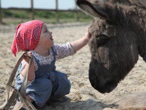Ferienwohnung 1 auf Selmas Ponyhof