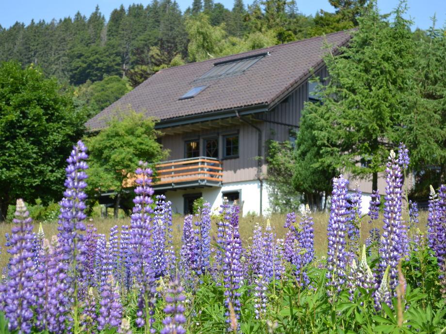Außenansicht Haus Besamia