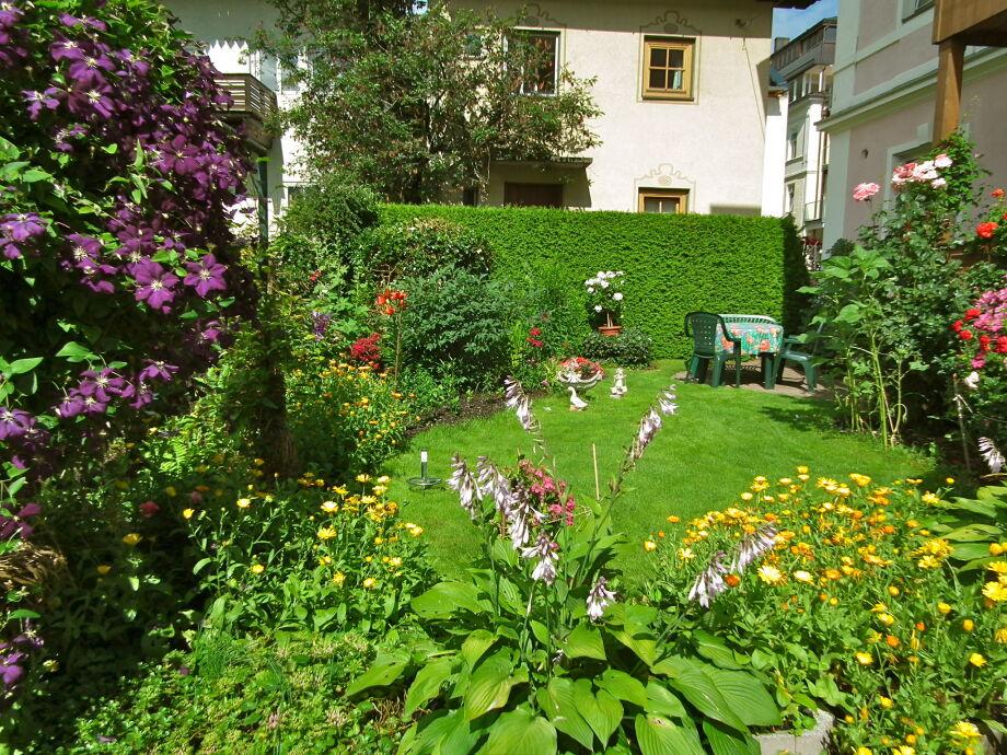 Villa Luise Garten
