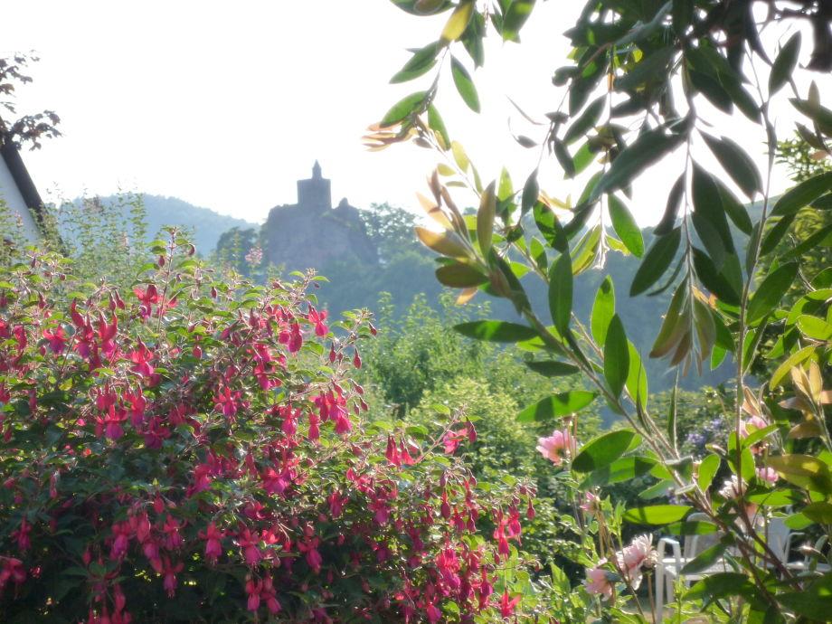 Blick zur Burg von der Terrasse