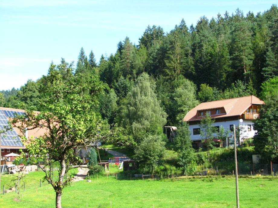 Kammeerhof mit Ferienhaus