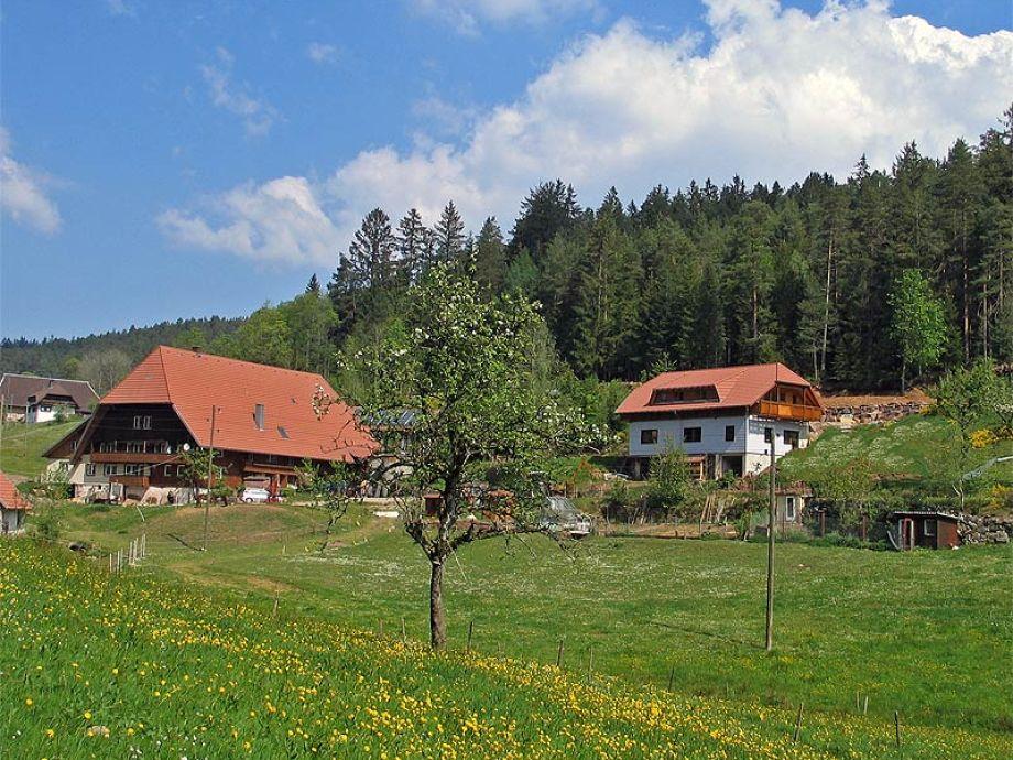 Kammererhof mit Ferienhaus