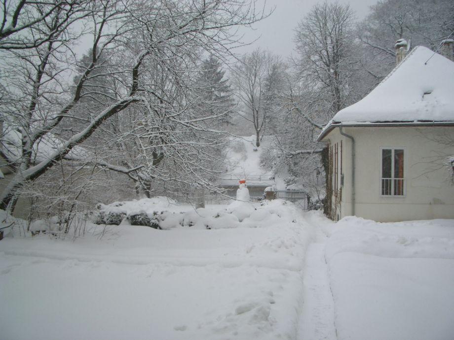 Auch der Winter hat seinen Reiz