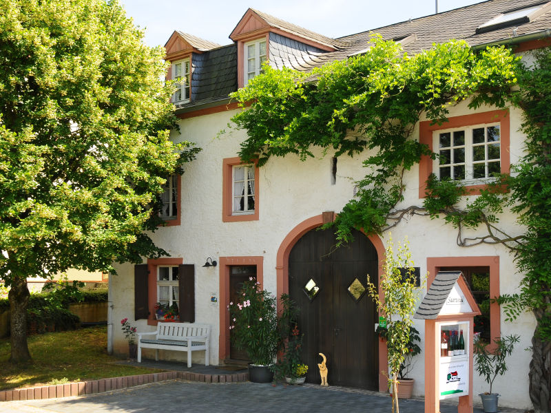 Ferienwohnung Himmelblau auf dem Weingut Willems-Willems