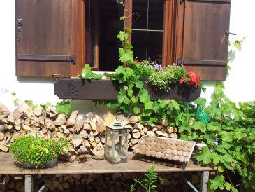 """Ferienwohnung im Landhaus """"In der hohen Eich"""" - Altes Forsthaus"""