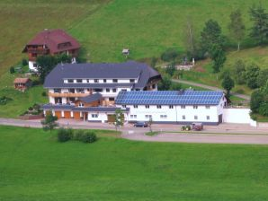 Holiday apartment am Schneeberg