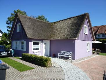 Ferienhaus Lila Villa