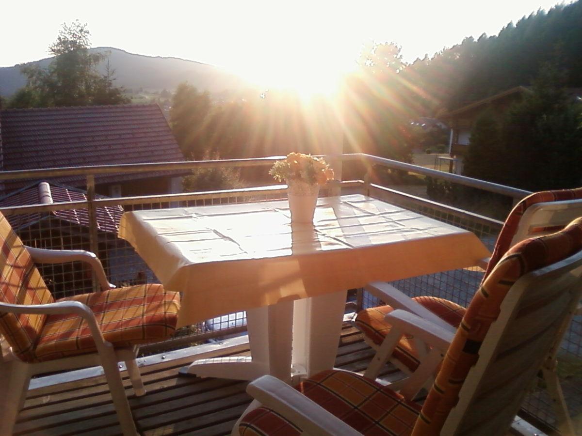 Maisonette ferienwohnung bodenmais silberberg 94249 for Ameisen auf dem balkon