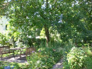 Erholung zwischen Wald und Reben Ferienwohnung am Klemmbach