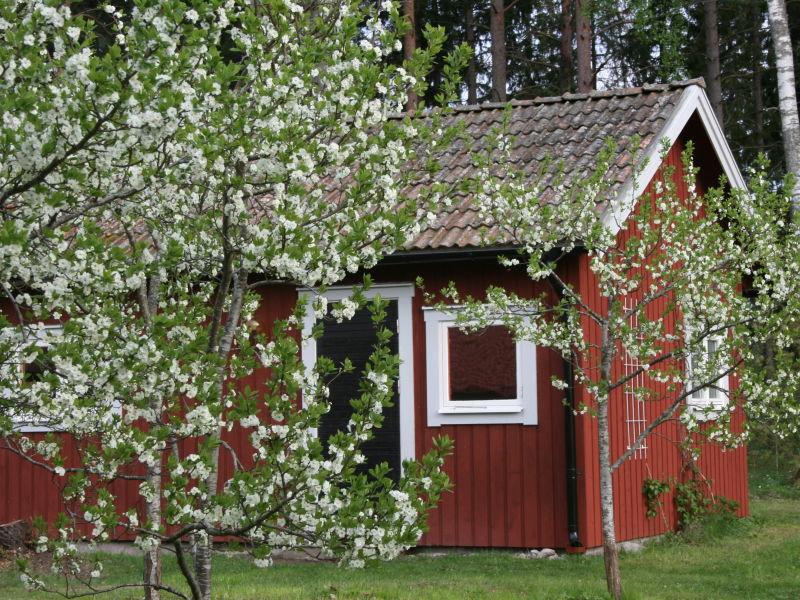 Ferienhaus Ahornfarm Håkannäs