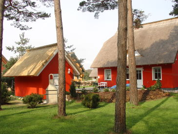 Ferienhaus Haus Moewe