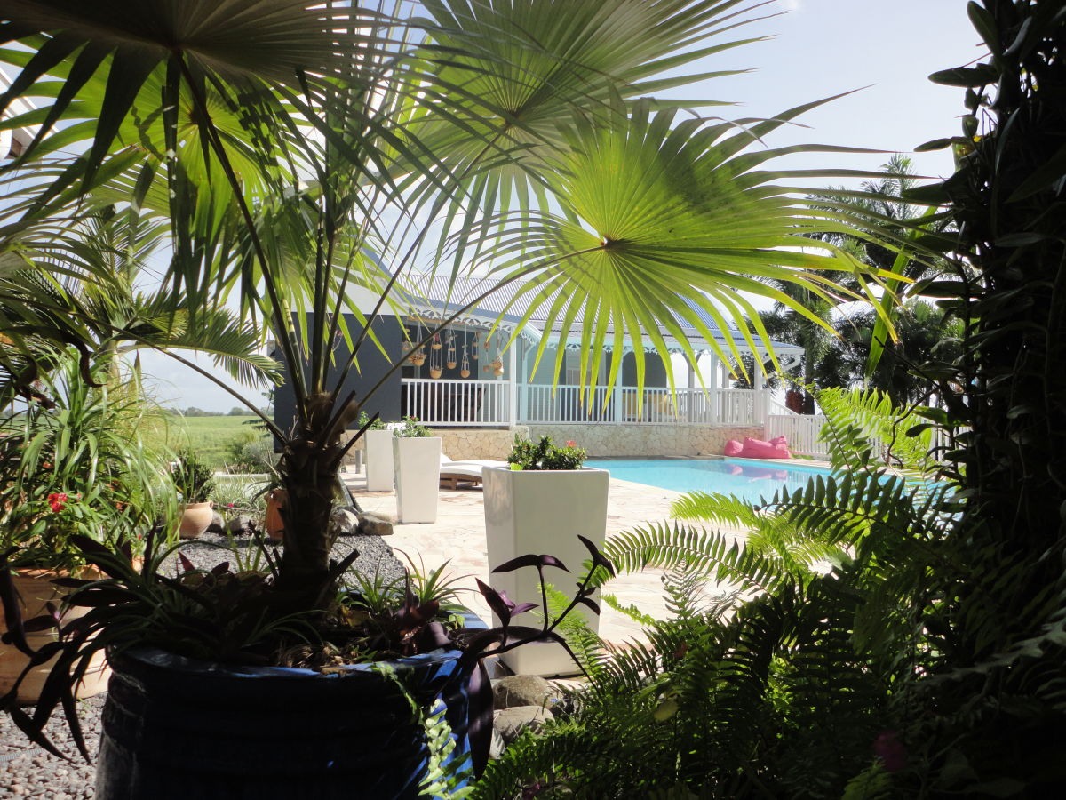 residenz la maison calebasse guadeloupe caribbean firma la maison calebasse frau brigitte. Black Bedroom Furniture Sets. Home Design Ideas