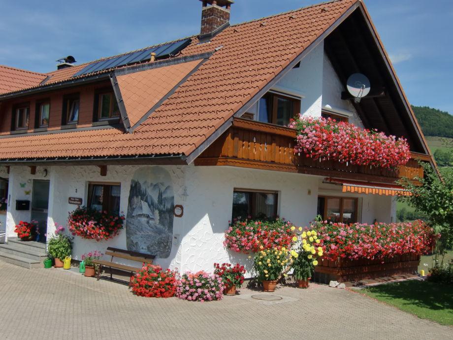 Haus Ahorn Blumengrüsse 2012