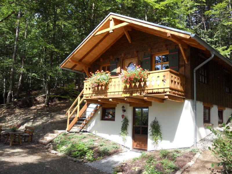 Ferienhaus Willinger-Echo