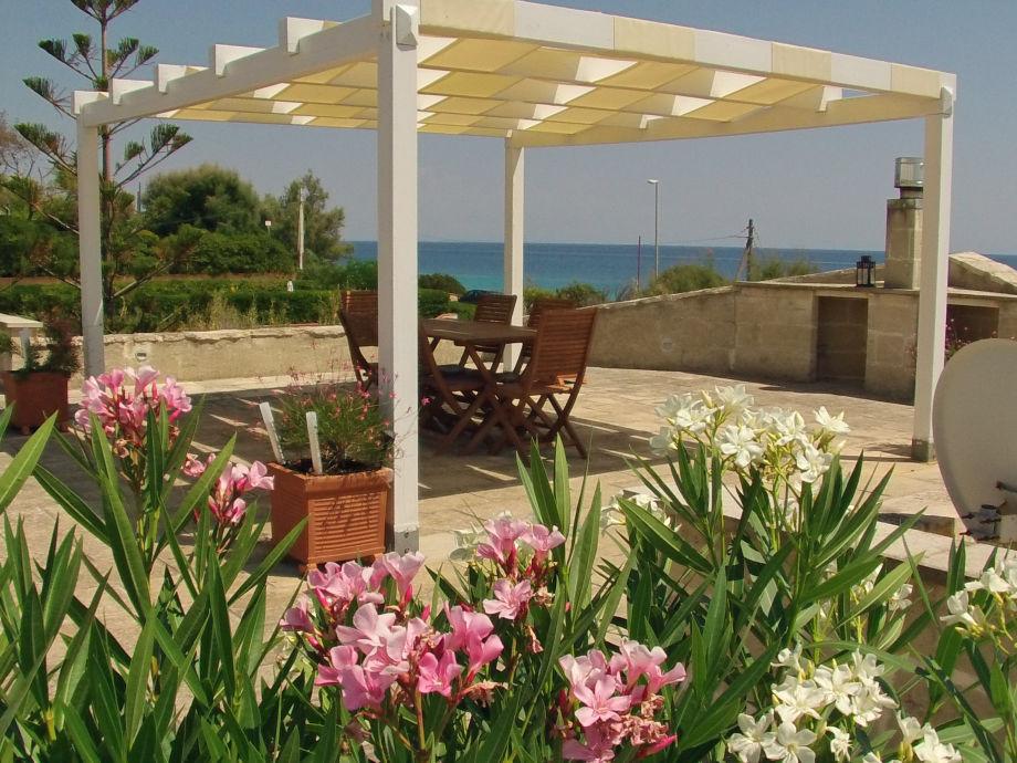 La Barca - roof terrace