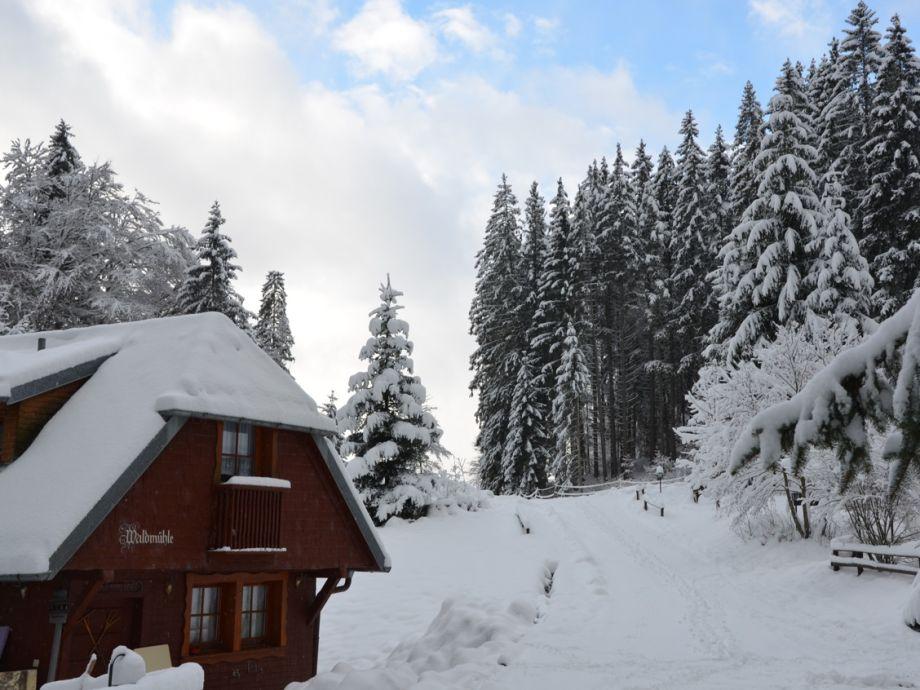 Außenaufnahme Waldmühle im Wohnpark Weiherhof am Titisee