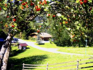 Ferienhaus Chalet Astrid
