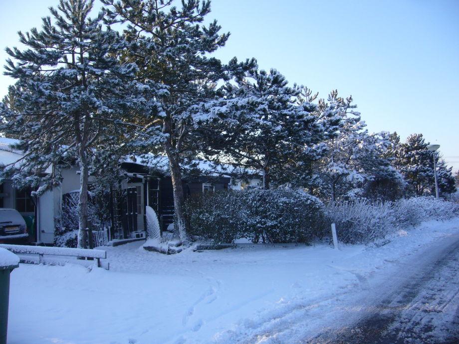 Wohnung Streichen Im Winter : Ferienhaus Zeeschelp, Callantsoog Nordsee Küste, Kopf von Nord